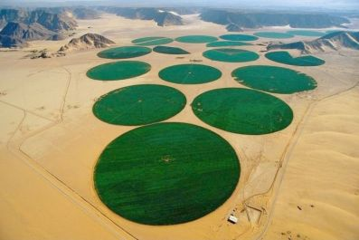 Irrigation from a central pivot sprinkler in the desert